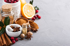 Homemade mix of spices in a jar Stock Photo