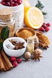 Homemade mix of spices in a jar Stock Images