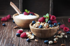 Homemade muesli with berry and nuts Royalty Free Stock Photography