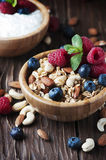 Homemade muesli with berry and nuts Stock Photography