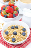 Homemade muesli with blueberries, fresh berries for breakfast Royalty Free Stock Images