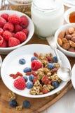 Homemade muesli with fresh berries and yogurt for breakfast Royalty Free Stock Photography