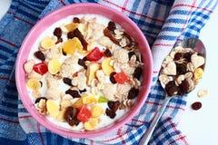 Homemade muesli with yogurt. Bowl of cereals stock image