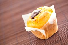 Homemade muffin filled with chocolate Royalty Free Stock Photography