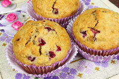 Homemade muffins Stock Image