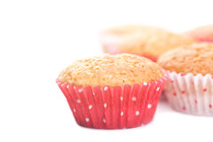 Homemade muffins Stock Images