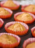 Homemade muffins. Fresh and tasty homemade muffins, selective focus on one of them Royalty Free Stock Photos