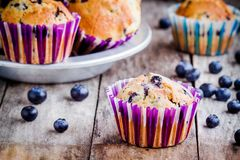 Homemade muffins with blueberries closeup Stock Images