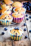 Homemade muffins with blueberries Royalty Free Stock Photo