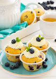 Homemade muffins with blueberries. Royalty Free Stock Photography