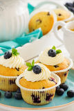 Homemade muffins with blueberries. Stock Images