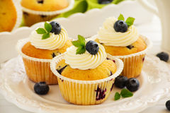 Homemade muffins with blueberries. Royalty Free Stock Photo