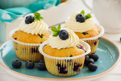 Homemade muffins with blueberries. Royalty Free Stock Image
