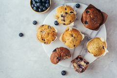 Homemade muffins with blueberries Royalty Free Stock Photography