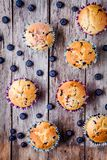 Homemade muffins with blueberries top view Stock Image