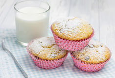 Homemade muffins with choco chips and glass of milk. Closeup Royalty Free Stock Photos