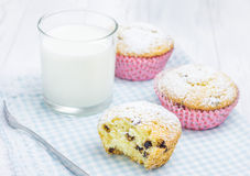 Homemade muffins with choco chips and milk. Homemade muffins with choco chips and glass of milk Royalty Free Stock Photography