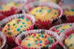 Homemade muffins, colorful,. Homemade muffins, colored, with colored sugar drops, multicolored. depth of field Stock Photography