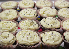 Homemade muffins. Cupcakes background, closeup Royalty Free Stock Images