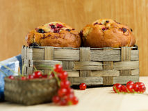 Homemade muffins with currants Royalty Free Stock Photography