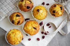 Homemade muffins with raisins on the burlap cloth. Delicious homemade muffins with raisins on the burlap cloth Royalty Free Stock Images