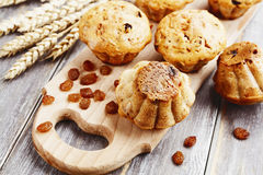 Homemade muffins with raisins Stock Images