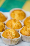 Homemade muffins. Still life image of tasty homemade muffins arranged on colorful tablecloth Royalty Free Stock Images
