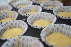 Homemade muffins, to cook. Home made muffins to cook, resting on tray on colored cups Royalty Free Stock Photos