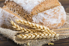 Homemade multigrain sourdough bread Royalty Free Stock Photo