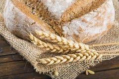 Homemade multigrain sourdough bread Royalty Free Stock Images