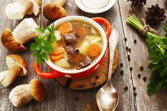 Homemade mushroom soup Royalty Free Stock Photo