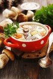 Homemade mushroom soup Stock Photos