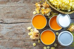 Homemade natural lip balm orange color from Annatto tree stock images