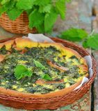 Homemade nettle quiche Stock Images