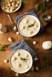 Homemade New England Clam Chowder Stock Photography