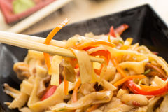 Homemade noodles with meat Royalty Free Stock Photo
