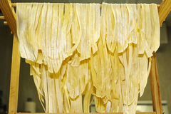 Homemade noodles Royalty Free Stock Image
