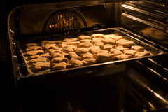 Homemade nut cookies in the oven royalty free stock photography