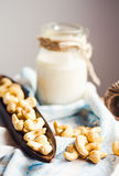Homemade nut milk from cashew nuts, organic food Stock Image