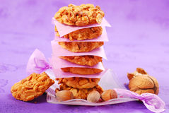 Homemade nuts cookies Royalty Free Stock Photo