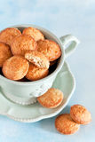 Homemade oat bran cookies Royalty Free Stock Photos