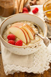 Homemade oatmeal for breakfast. With apple, cinnamon and honey Royalty Free Stock Photography