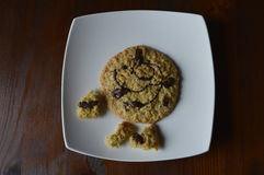 Homemade oatmeal cookie. Homemade cookie, oatmeal cookie with chocolate, healthy biscuit royalty free stock images