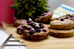 Homemade oatmeal cookies with blackberry Stock Images