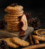 Homemade oatmeal cookies. With spices and pine cones stock photography