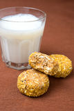Homemade oatmeal cookies with pumpkin and milk Royalty Free Stock Images