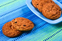 Homemade oatmeal cookies with raisins Royalty Free Stock Photos
