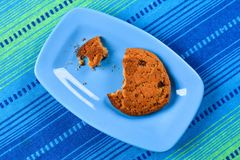 Homemade oatmeal cookies with raisins Royalty Free Stock Photo