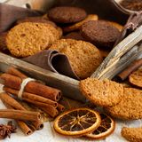 Homemade oatmeal cookies. With spices and pine cones stock image