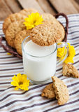 Homemade oatmeal peanut butter cookies Stock Photos